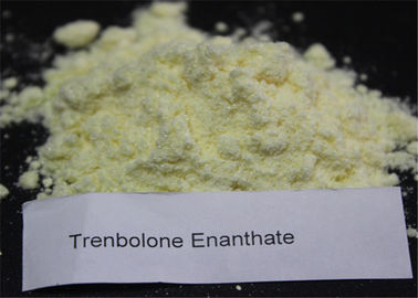 Trenbolone Series Powder