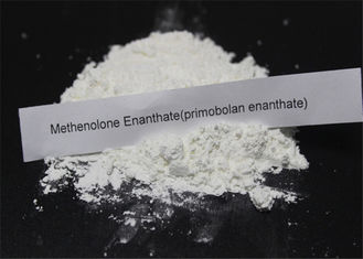 Methenolone Enanthate Powder