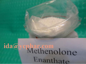 China Bodybuilding Raw Steroid Powder Methenolone Enanthate CAS 303-42-4 factory