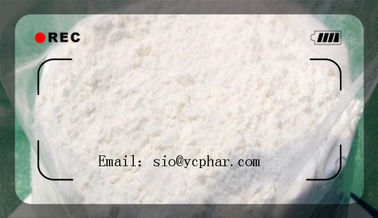 China White Raw Powder Methenolone Acetate (Primobolan) CAS: 434-05-9 Promote Muscle Growing Efficient And Safe Delivery factory