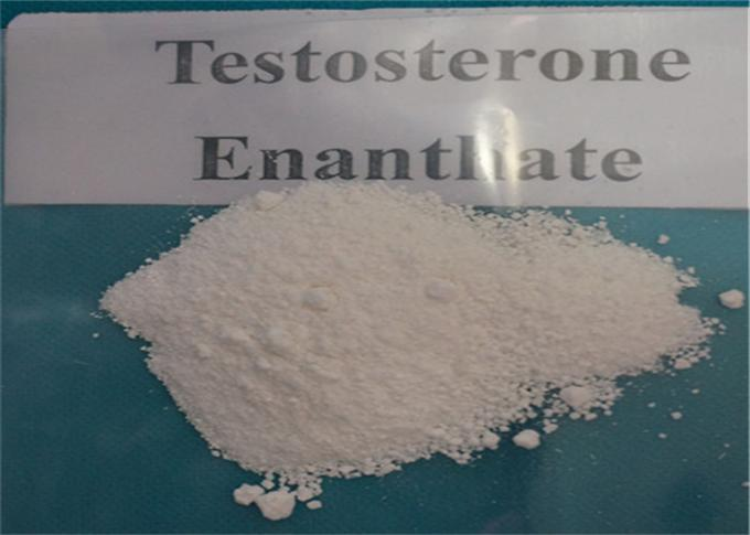 Power Gaining Testosterone Anabolic Steroid Testosterone